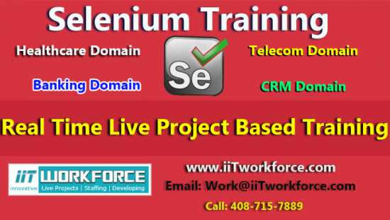Selenium Real-time Project Workshop experience